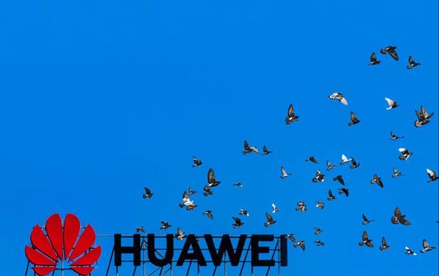 Doanh số bán smartphone của Huawei giảm mạnh tại thị trường Tây Âu và đó không còn là điều bất ngờ nữa - Ảnh 1.