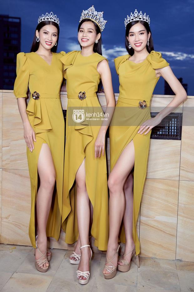 So học vấn top 3 các cuộc thi Hoa hậu đình đám nhất: HH Việt Nam, HH Hoàn vũ VN, HH Thế giới VN ai nắm trùm? - Ảnh 1.