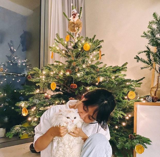HOT nhất mùa Giáng sinh 2020 là những cây thông tiền triệu, từ Ngọc Trinh đến Cường Đô La đều chi mạnh cho thú vui này! - Ảnh 22.