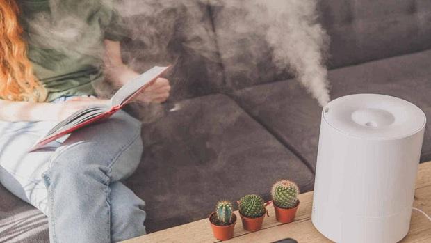 5 điều cần nhớ khi sử dụng máy tạo độ ẩm trong trời hanh khô để tránh làm hỏng da, hại sức khỏe - Ảnh 3.
