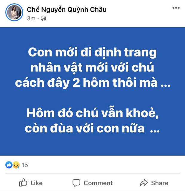 MXH Việt bàng hoàng trước sự ra đi của danh hài Chí Tài: Cúi đầu tiễn biệt chú, nụ cười tuổi thơ của con! - Ảnh 14.
