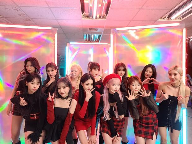 Bài mới của IZ*ONE có thứ hạng nhạc số lẹt đẹt, Knet cà khịa: Tưởng là nhóm nữ hàng đầu, ai dè ra nhạc chỉ mỗi fan nghe! - Ảnh 4.