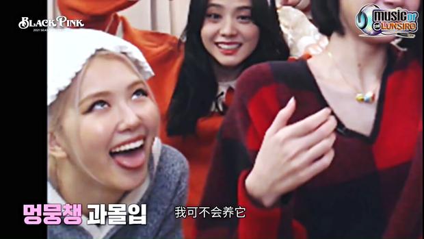"""Khung hình năm mới gây sốt của BLACKPINK: Lisa mếu khóc, Jennie - Jisoo phá hình tượng, Rosé mặt gì mà """"khó đỡ"""" thế này? - Ảnh 4."""
