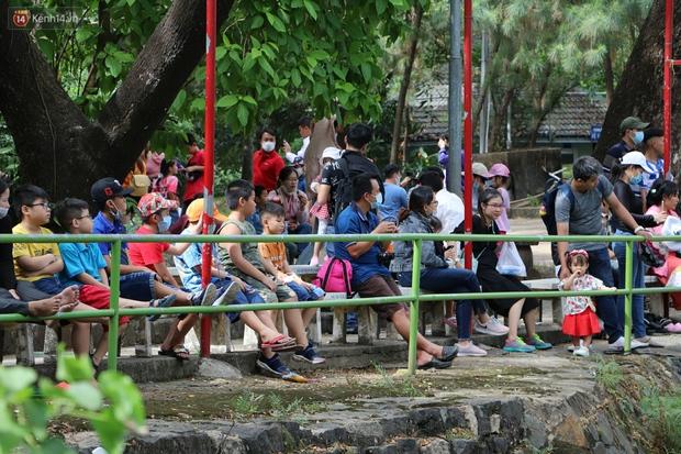 ẢNH: Thảo Cầm Viên đông đúc từ sáng đến chiều, hàng ngàn bố mẹ đưa con đi chơi Tết Dương lịch - Ảnh 13.