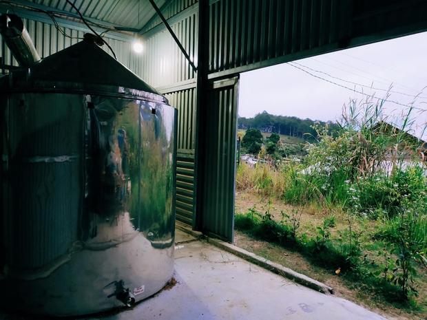 Chàng trai lên Đà Lạt dựng ngôi nhà gỗ xinh xắn, mở nông trại chiết tinh dầu: Nhìn là thấy một bầu trời bình yên - Ảnh 6.