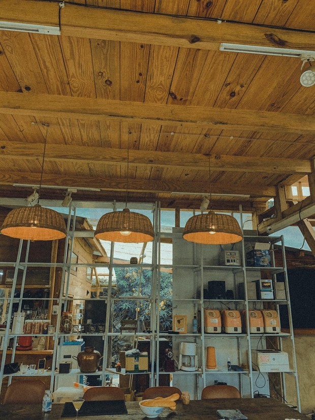 Chàng trai lên Đà Lạt dựng ngôi nhà gỗ xinh xắn, mở nông trại chiết tinh dầu: Nhìn là thấy một bầu trời bình yên - Ảnh 10.