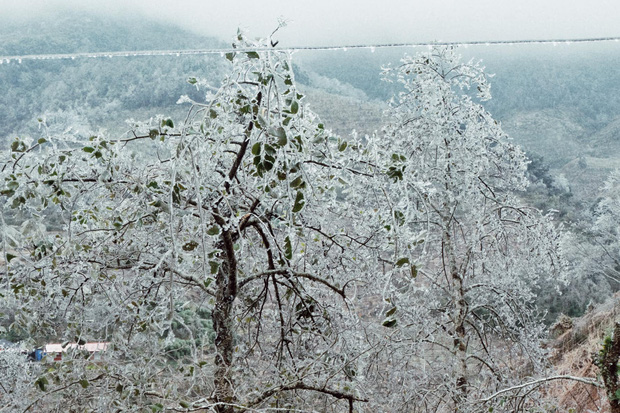 Hội trai xinh gái đẹp tung ảnh check in tuyết ở Y Tý, Sa Pa đẹp hú hồn, không ngờ Việt Nam mình cũng có những nơi thế này! - Ảnh 6.
