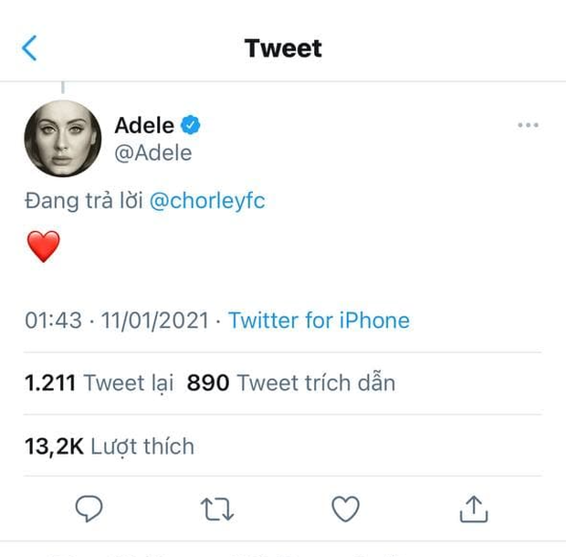 Adele vượt 180 kiếp nạn từ quản lý để đăng nhập vào Twitter với mục đích duy nhất: like video trai đẹp cởi trần cực mlem hát hit của mình! - Ảnh 1.