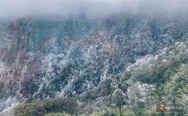 Clip: Núi rừng Sa Pa vẫn ngập trong băng tuyết trắng xoá, khung cảnh vô cùng ảo diệu - Ảnh 7.