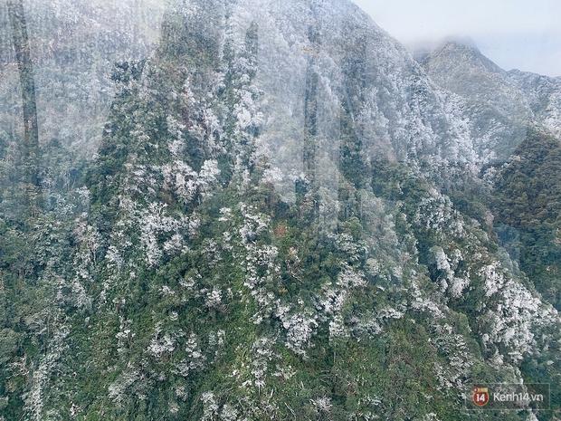 Clip: Núi rừng Sa Pa vẫn ngập trong băng tuyết trắng xoá, khung cảnh vô cùng ảo diệu - Ảnh 3.