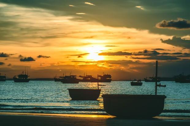 Nuôi cá, trồng rau hay ngắm biển qua ngày? Câu chuyện của một chiếc chiếu từng trải sẽ giúp bạn hiểu cuộc sống mơ ước thực ra chẳng giống tưởng tượng - Ảnh 1.
