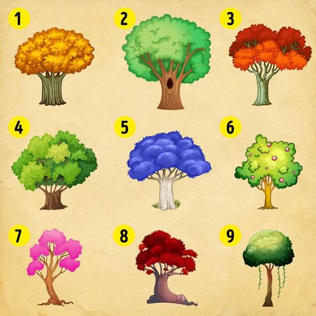 Quiz: Hãy chọn một cái cây trong hình sau, và nó sẽ cho bạn biết bản thân nên mong chờ điều gì trong dịp Tết sắp tới - Ảnh 1.