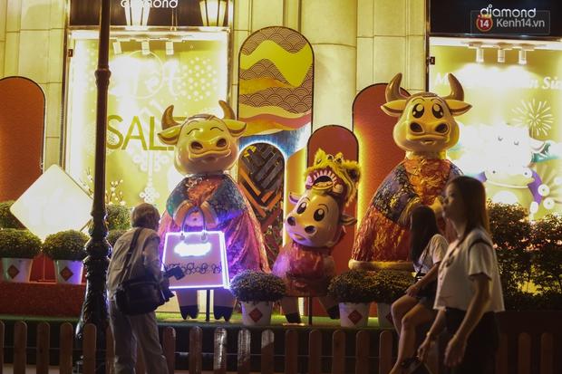 Gia đình trâu ngộ nghĩnh xuống phố Sài Gòn đón Tết Tân Sửu 2021 khiến nhiều người thích thú - Ảnh 6.
