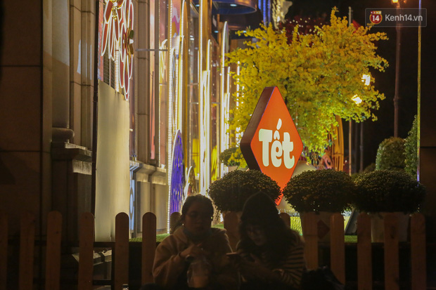 Gia đình trâu ngộ nghĩnh xuống phố Sài Gòn đón Tết Tân Sửu 2021 khiến nhiều người thích thú - Ảnh 10.