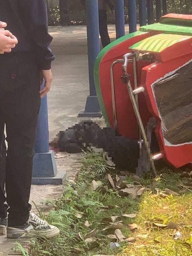 Đình chỉ hoạt động khu du lịch Đảo Ngọc Xanh sau sự cố tàu lượn khiến 1 học sinh tử vong - Ảnh 2.