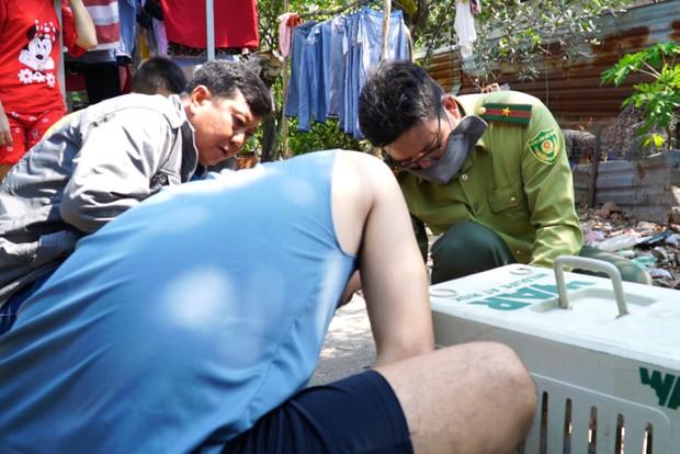 """Thêm nhiều con khỉ """"đại náo"""" khu dân cư Sài Gòn bị bắt, trong đó có cặp đực và cái - Ảnh 1."""