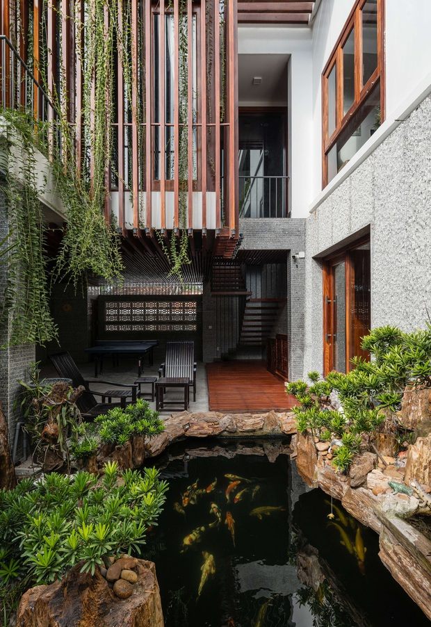 Nhà phố được cải tạo thành nơi trồng rau nuôi cá đúng chất, khu vườn trên mái là mơ ước của nhiều gia đình - Ảnh 3.