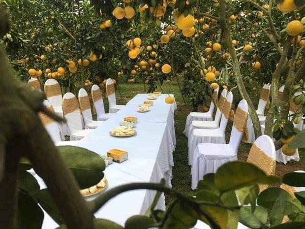 Bàn tiệc cưới bày giữa vườn trái cây ở miền Tây gây xôn xao khắp mạng xã hội, nhiều người gợi ý nên mang theo thứ đặc biệt này khi đến dự - Ảnh 1.