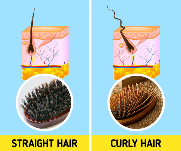 5 sai lầm khi chải tóc có thể làm hỏng mái tóc của bạn, sửa ngay nếu muốn tóc bóng mượt hơn - Ảnh 2.