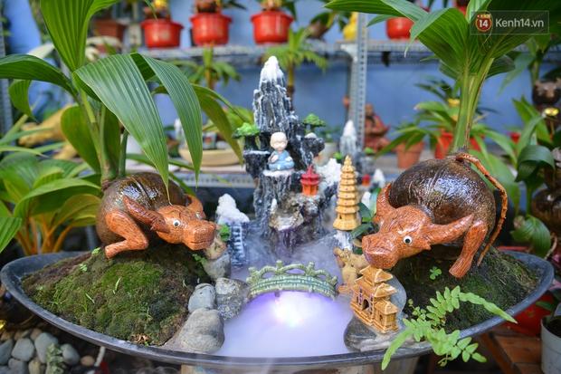 Độc đáo dừa bonsai hình con trâu khiến người Sài Gòn bỏ hàng triệu đồng mua chơi Tết Tân Sửu 2021 - Ảnh 11.