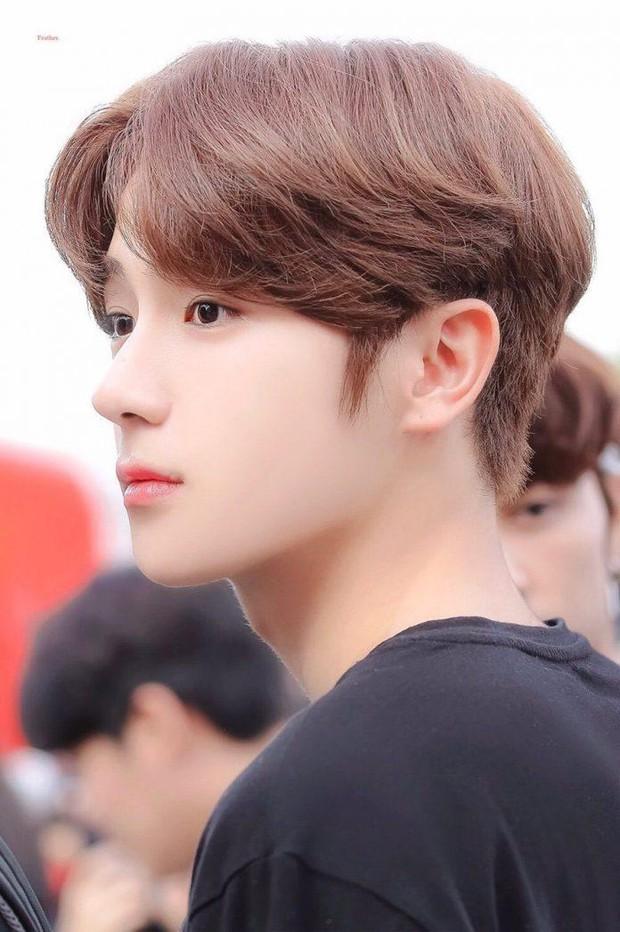 Knet chọn ra những nam idol có sống mũi chơi cầu trượt hoàn hảo nhất: V (BTS) đẹp sắc nét như đồ họa vẫn thua 1 nam thần SM - Ảnh 15.