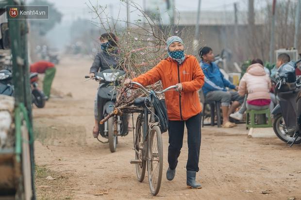 Ảnh: Trời lạnh sương mờ, làng đào Nhật Tân khoe sắc, đúng là Tết đang đến rất gần rồi! - Ảnh 9.