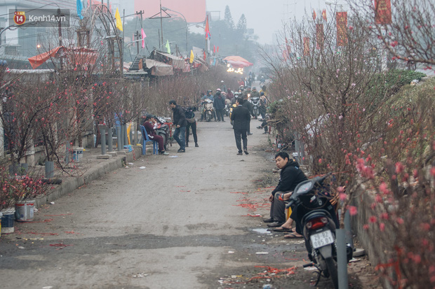 Ảnh: Trời lạnh sương mờ, làng đào Nhật Tân khoe sắc, đúng là Tết đang đến rất gần rồi! - Ảnh 11.