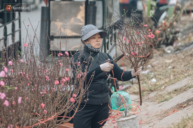 Ảnh: Trời lạnh sương mờ, làng đào Nhật Tân khoe sắc, đúng là Tết đang đến rất gần rồi! - Ảnh 12.
