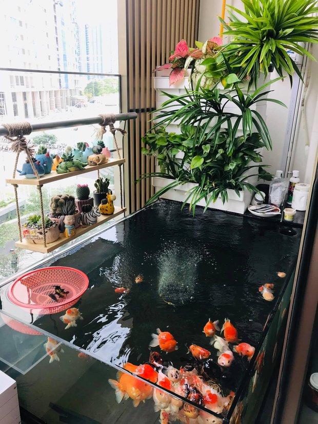 Bán nhà chung cư 2 phòng ngủ, cô nàng chuyển về căn hộ 39m2 ở Phú Mỹ Hưng để trồng cây, nuôi cá - Ảnh 7.
