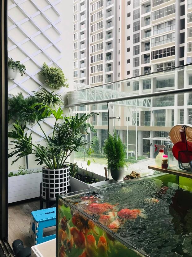 Bán nhà chung cư 2 phòng ngủ, cô nàng chuyển về căn hộ 39m2 ở Phú Mỹ Hưng để trồng cây, nuôi cá - Ảnh 8.