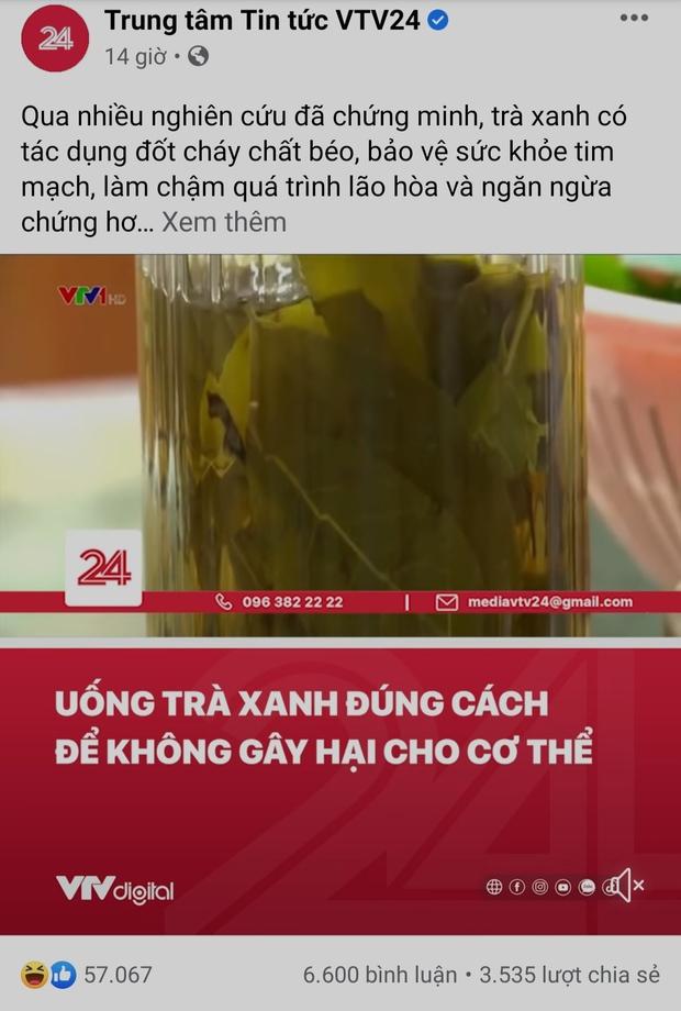 VTV bất ngờ có mặt giữa tâm biến Sơn Tùng - trà xanh, đăng post kiến thức ngỡ không liên quan mà khiến netizen vỗ tay rần rần - Ảnh 2.