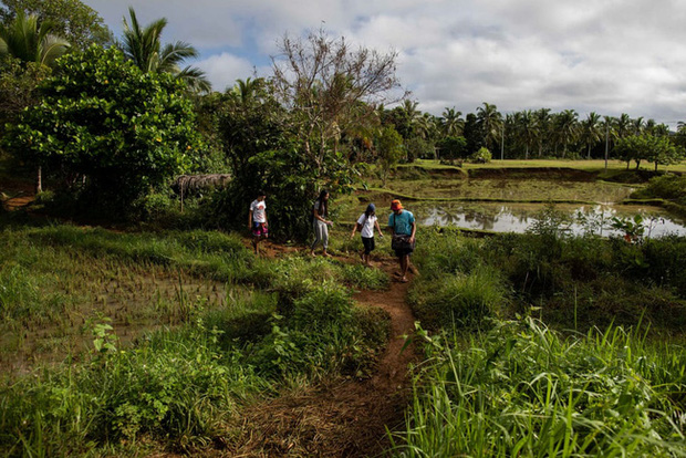 Học trực tuyến ở Philippines: Băng rừng lên núi, trèo nóc nhà hay ra nghĩa địa chỉ để có Internet, việc học chưa bao giờ gian nan đến thế! - Ảnh 1.