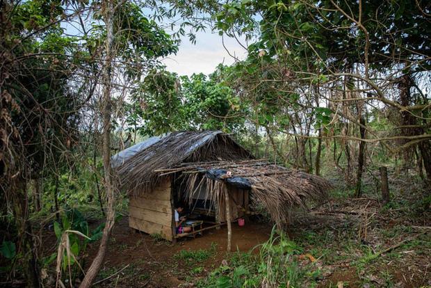 Học trực tuyến ở Philippines: Băng rừng lên núi, trèo nóc nhà hay ra nghĩa địa chỉ để có Internet, việc học chưa bao giờ gian nan đến thế! - Ảnh 2.