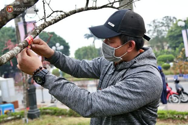 """Hà Nội: Những cành đào rừng Sơn La được dán tem đầu tiên """"rủng rỉnh"""" xuống phố chờ khách mua về chơi Tết - Ảnh 11."""