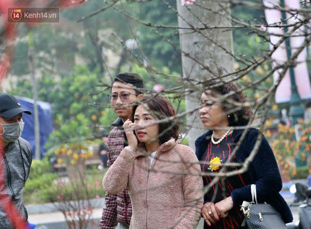 """Hà Nội: Những cành đào rừng Sơn La được dán tem đầu tiên """"rủng rỉnh"""" xuống phố chờ khách mua về chơi Tết - Ảnh 17."""