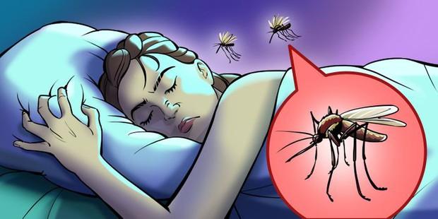 Hóa ra đây là lý do tại sao muỗi luôn vo ve ở bên tai chúng ta và cách cực đơn giản để giải quyết sự khó chịu này - Ảnh 1.