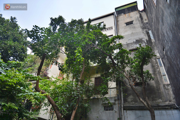 """""""Thiếu gia kim hoàn chia sẻ về cuộc sống nhung lụa và Tết xưa trong căn dinh thự """"ngàn cây vàng"""" giữa phố cổ Hà Nội - Ảnh 4."""