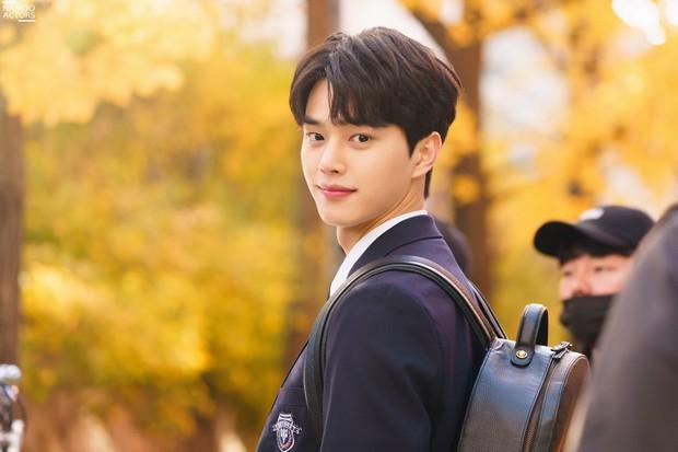 6 nam thần trẻ xứ Hàn lên hương năm 2020: Mê nhất cặp Song Kang - Lee Do Hyun đã có sắc còn dư thừa tài năng! - Ảnh 4.