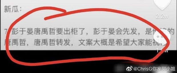 Tin sốc nửa đêm: Bành Vu Yến chuẩn bị công khai bạn trai là mỹ nam Hana Kimi, cả hai đã lên kế hoạch bài bản? - Ảnh 3.