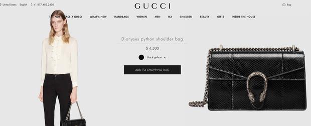 Xem ảnh Hoa hậu Đỗ Thị Hà đeo túi Gucci, lẽ nào công chúng sẽ có ví dụ mới về vấn nạn dìm hàng hiệu? - Ảnh 4.