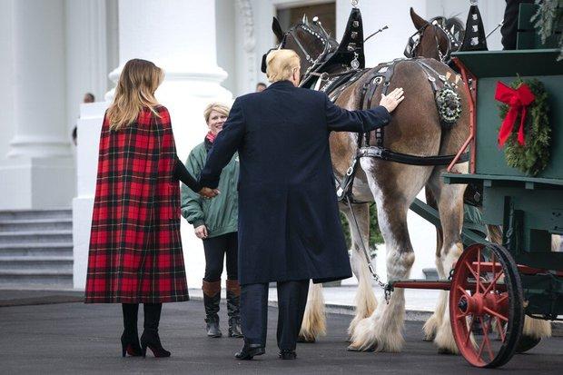 """Những món quà siêu độc mà """"Quý tử nước Mỹ"""" Barron Trump nhận được từ người nổi tiếng, đỉnh nhất là món quà từ Tổng thống Mông Cổ - Ảnh 6."""