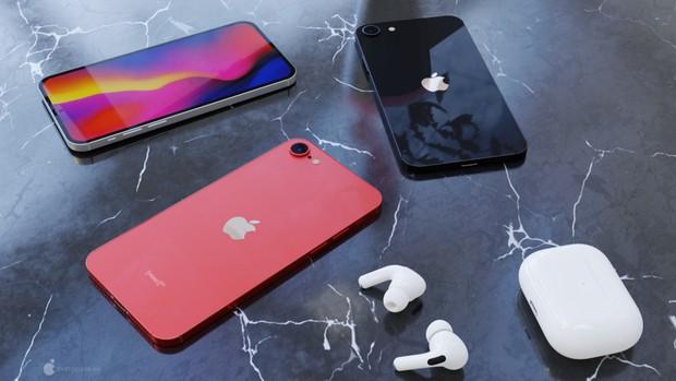 Phiên bản thu nhỏ của iPhone 12: iPhone SE Plus lộ thông số kỹ thuật và giá bán, dự kiến ra mắt tháng 3/2021 - Ảnh 6.