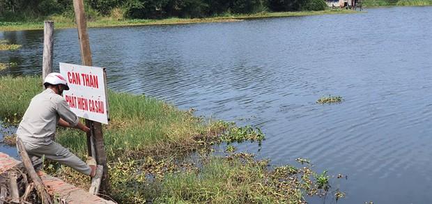 Nghi 2 con cá sấu nặng gần 100kg bơi lập lờ trong hồ nước ở Vũng Tàu: Tìm kiếm, thuê thợ vây bắt - Ảnh 2.