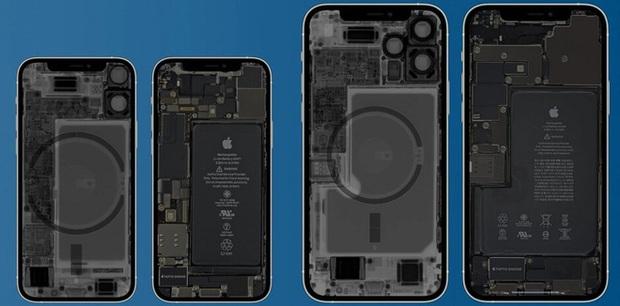 Apple cảnh báo iPhone 12 có thể gây ra vấn đề sức khỏe nghiêm trọng - Ảnh 2.
