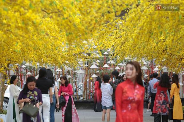 Bà đồ xinh đẹp mặc áo dài, viết thư pháp tại đường hoa mai ở Sài Gòn thu hút nhiều người - Ảnh 5.