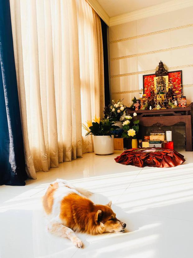 Khám phá căn hộ là giải thưởng của Khánh Vân khi trở thành Hoa hậu Hoàn vũ - Ảnh 4.