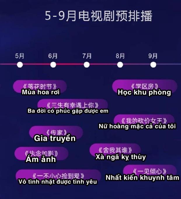 Lộ lịch phim Hoa ngữ 2021 của Youku: Dương Tử - Triệu Lệ Dĩnh chiến nhau cuối năm, Thiên Nhai Khách khai mạc đại chiến đam mỹ? - Ảnh 2.