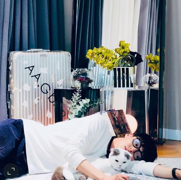Sốc nặng vì diện mạo gầy đáng báo động của Ahn Jae Hyun giữa lúc vợ cũ Goo Hye Sun tuyên bố hẹn hò tình mới - Ảnh 5.