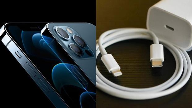 Bỏ củ sạc chẳng bảo vệ được môi trường, tại sao cả Apple và Xiaomi đều tuyên bố như vậy, chỉ có Motorola là thật thà? - Ảnh 1.