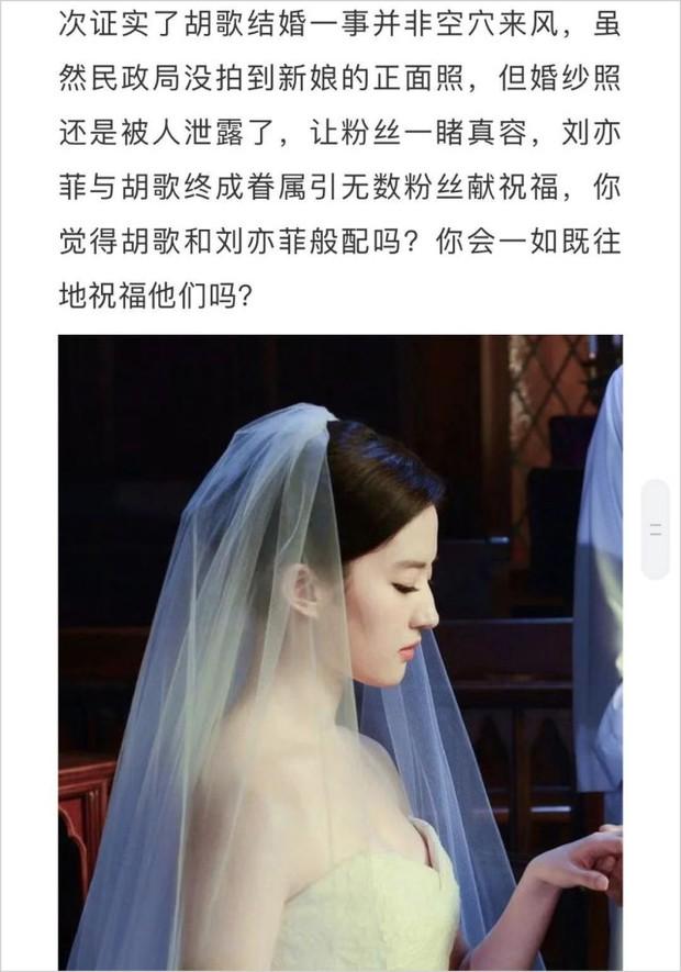Rầm rộ tin Hồ Ca - Lưu Diệc Phi bí mật đi đăng ký kết hôn ở Thượng Hải, dân tình nháo nhác vì ảnh cưới - Ảnh 3.